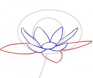Лепестковой называется диаграмма